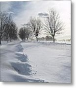 Snowscape Metal Print by Patricia McKay