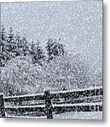 Snowstorm Coming Metal Print by Beverly Guilliams