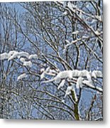 Snowy Branches With Blue Sky Metal Print