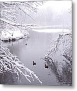 Snowy Day Ducks Metal Print