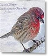 Snowy Day Housefinch With Verse  Metal Print