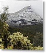 Snowy Desert Mountain Metal Print