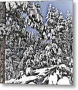 Snowy Dreams  Metal Print
