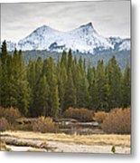 Snowy Fall In Yosemite Metal Print