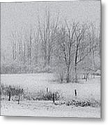 Snowy Fields Metal Print