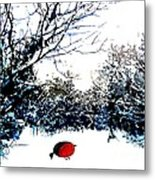 Snowy Forest At Christmas Time Metal Print