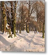 Snowy Forest Road 1908 Metal Print