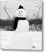 Snowy Joy Metal Print