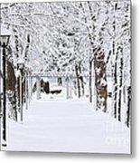 Snowy Lane In Winter Park Metal Print