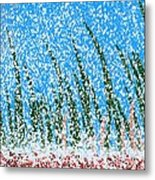 Snowy Lawn On A Sunny Day Metal Print