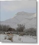 Snowy Morning Metal Print