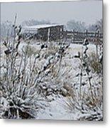 Snowy Pasture Metal Print by Melany Sarafis