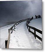 Snowy Pathway Metal Print