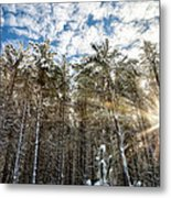 Snowy Pines With Sunflair Metal Print