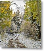 Snowy Road In Fall Metal Print