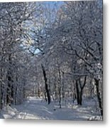 Snowy Trail Metal Print