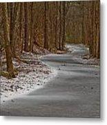 Snowy Trails Metal Print