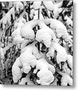 Snowy Tree - Black And White Metal Print