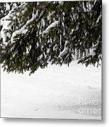 Snowy Tree Branches Metal Print