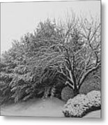 Snowy Trees In Black And White Metal Print