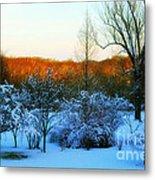 Snowy Trees In December Twilight - Pearl S. Buck Homestead Metal Print