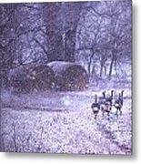 Snowy Turkey Trail Metal Print