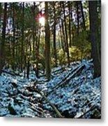 Snowy Valley Metal Print