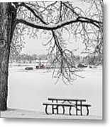 Snowy Winter Country Cottonwood Tree View Bwsc Metal Print by James BO  Insogna