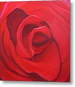So Red The Rose Metal Print by Hunter Jay