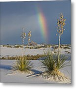 Soaptree Yucca And Rainbow White Sands Metal Print