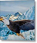 Soaring Bald Eagle Metal Print