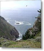 Soaring Over The Cliffs Metal Print