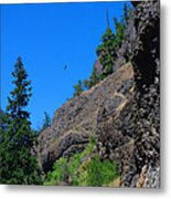 Soaring The Heights Metal Print