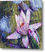 Water Lily Photography Tender Moments  Metal Print