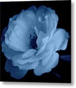 Soft Blue Perfection Metal Print