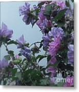 Soft Blues And Pink - Spring Blossoms Metal Print