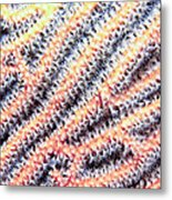 Soft Corals 10 Metal Print