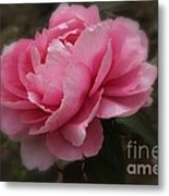 Soft Focus Pink Metal Print