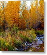 Soft Forest Colors Metal Print