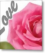 Soft Rose Metal Print