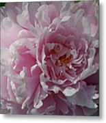 Soft Shades Metal Print