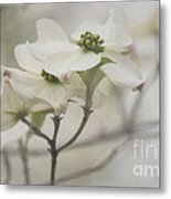 Soft Texture Of Spring Metal Print