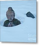 Solar Powered Dharmic Snow Remover  Metal Print