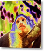 Solarized White-faced Monkey Metal Print