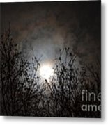 Solemn Winter's Moonlight Metal Print