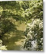 Solitary Waters Metal Print