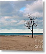 Solitude Metal Print by Dipali S