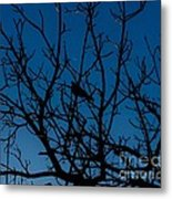 Solitude In The Midst Of Chaos Metal Print