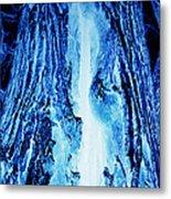 Solo Blue Metal Print