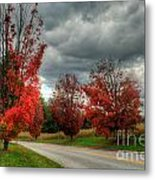 Some Fall Colors Metal Print